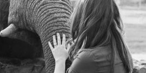 elephant-moments_14